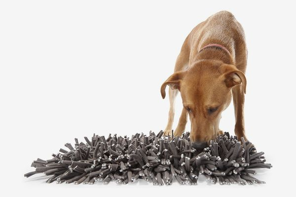 Tapis d'alimentation pour chien à priser PAW5