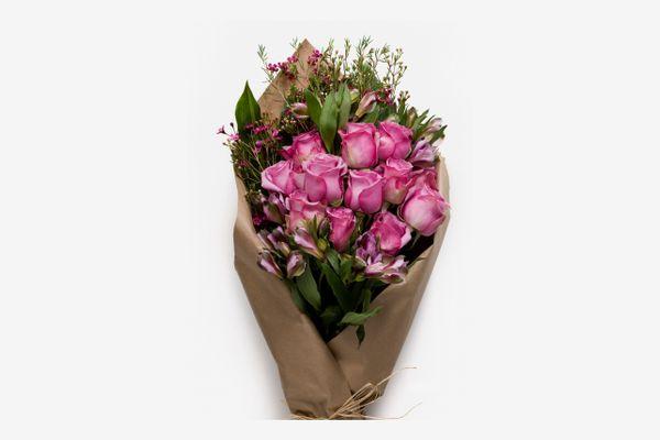 H. Bloom Pretty in Pink Bundle