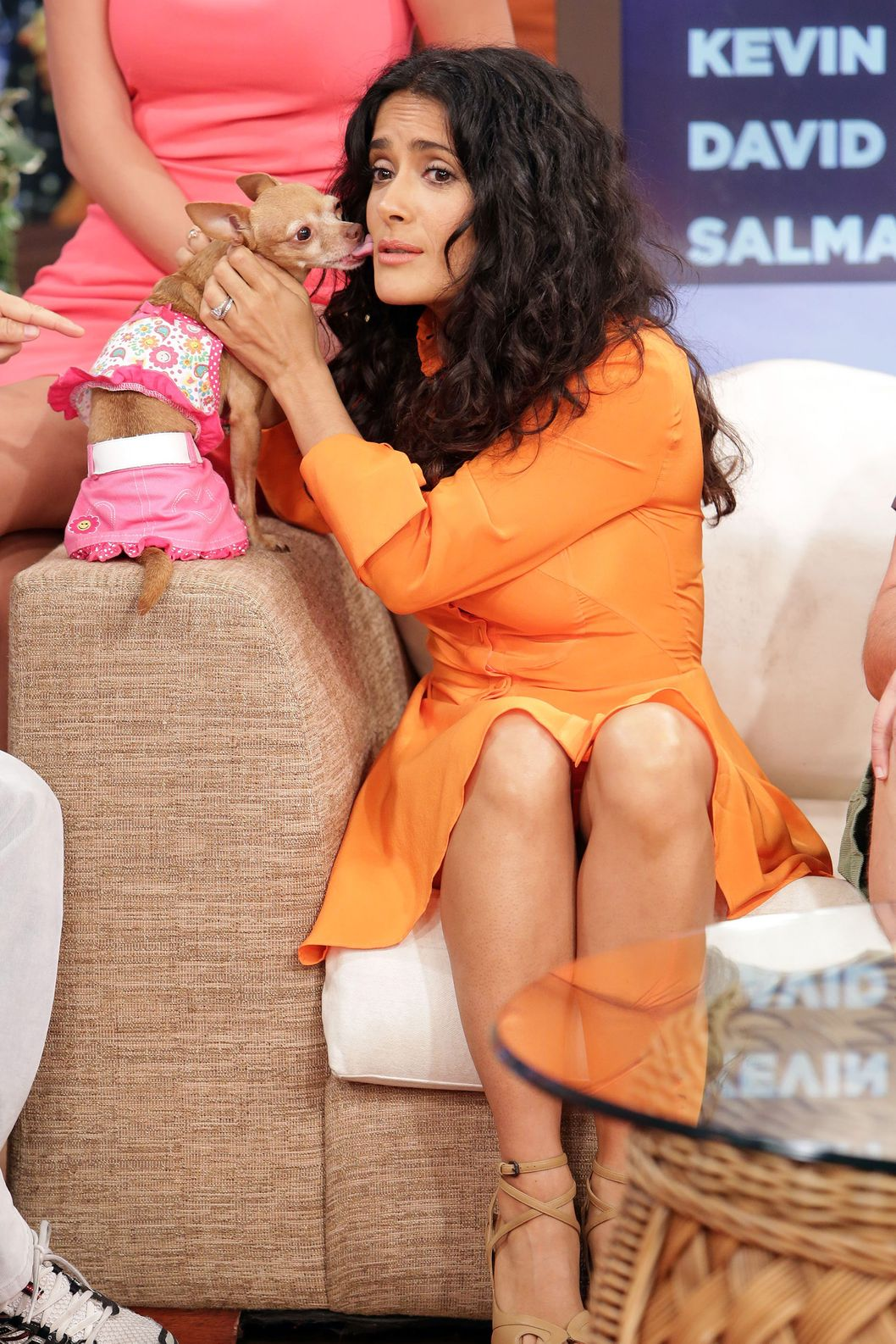 "MIAMI, FL - JULY 08: Salma Hayek of ""Grown Ups 2"" cast appears on Univision's ""Despierta America"" to promote the movie at Univision Headquarters on July 8, 2013 in Miami, Florida. (Photo by Alexander Tamargo/Getty Images)"