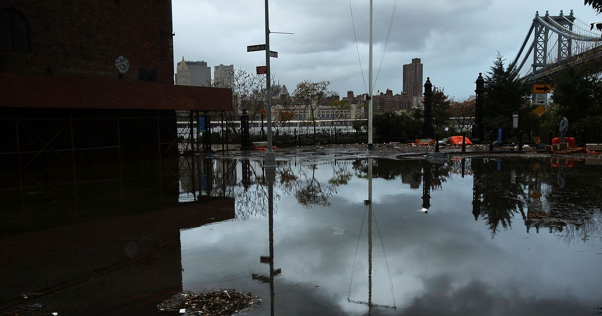 Six things you can do right now to help sandy damaged for New york city things to do today