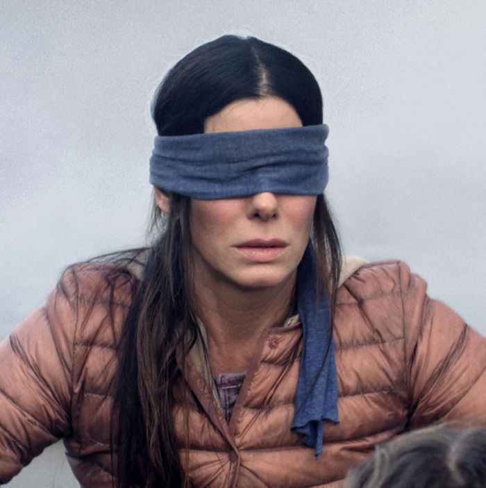 What Would You Do In A Bird Box Situation