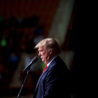 Donald Trump Campaigns In Harrisburg, Pennsylvania