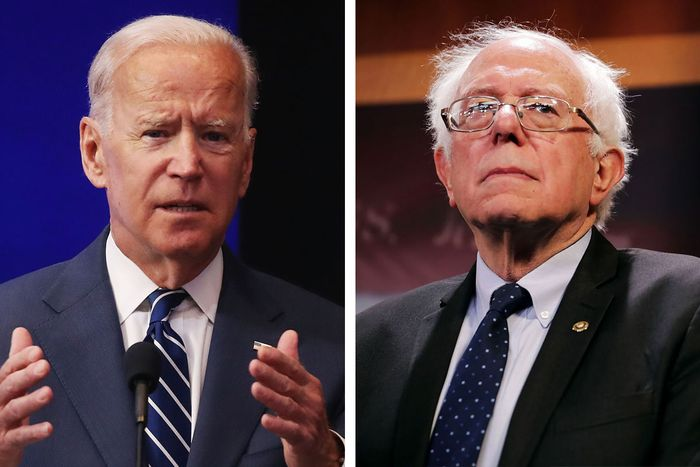 Image result for Biden and Sanders
