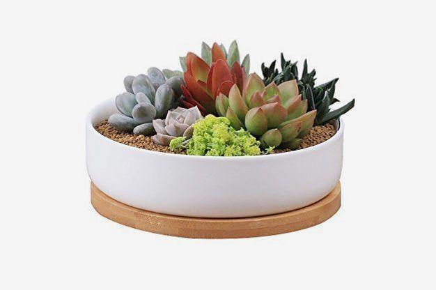 Binwen 6-inch Modern White Ceramic Planter Pot With Drainage Bamboo Tray