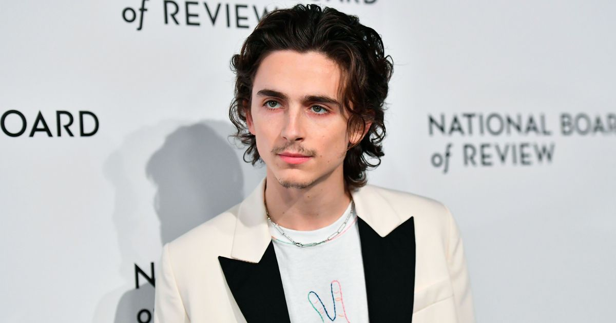 Timothée Chalamet and His Goatee Showed Up to Stan Uncut Gems Last Night