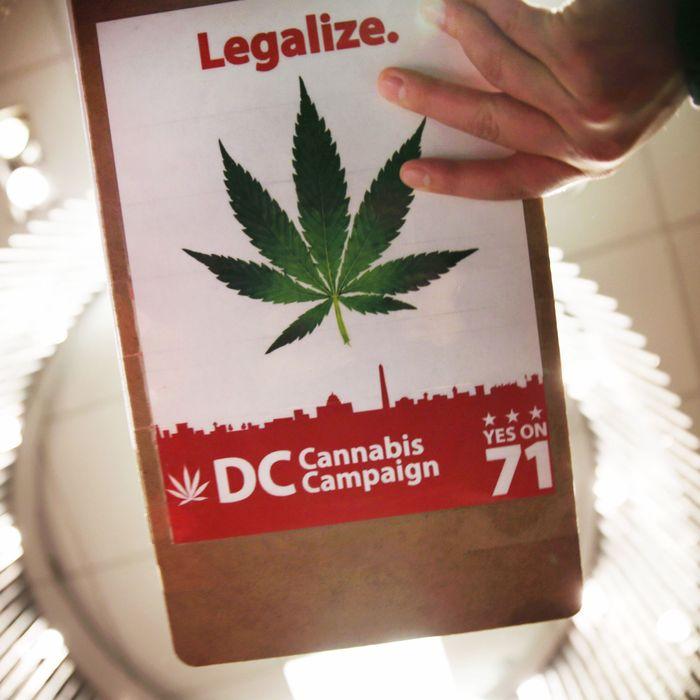 Marijuana Industry Expo Held In D.C.