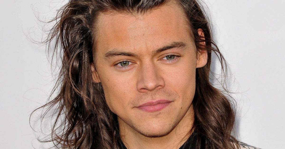 Harry Styles's Momentous Haircut Finally Revealed to