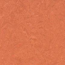 Forbo Marmoleum Composition Tile (1 sq. ft.)