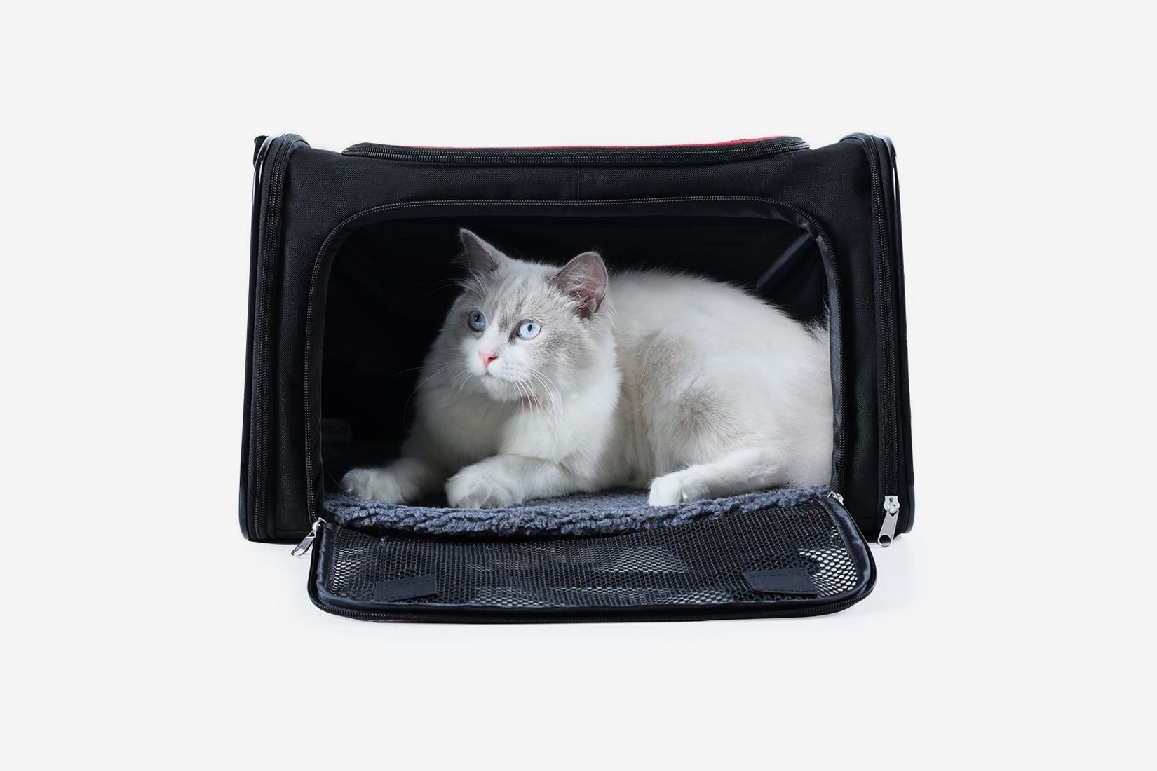 9c51132c1c A4Pet Collapsible Cat and Dog Carrier