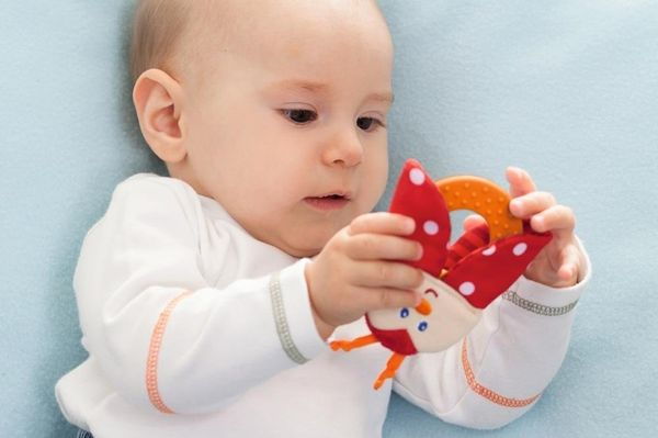 HABA Teether Chomp Champ Ladybug Soft Activity Toy with Crackling Foil & Plastic Teething Ring