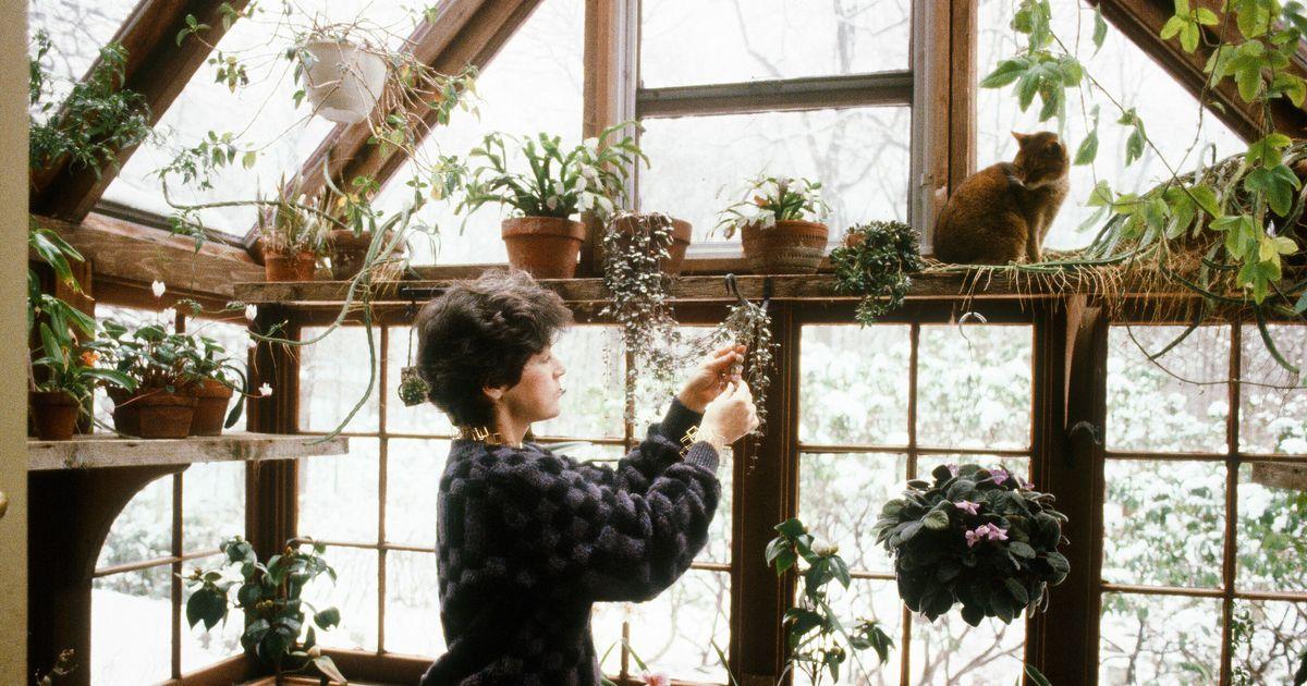 The Best Indoor Garden Kits, According to Chefs and Gardeners