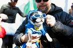 Scenes From Fort Greene's Dog Halloween Costume Contest