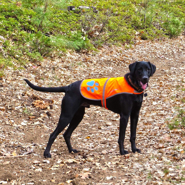 SafetyPUP XD Hi-Vis Fluorescent Reflective Dog Vest