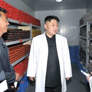 This undated picture, released from North Korea's official Korean central News Agency (KCNA) on June 3, 2013 shows North Korean leader Kim Jong Un (C) inspecting a pig farm under Korean People's Army (KPA) Unit 549 at undisclosed place in North Korea.