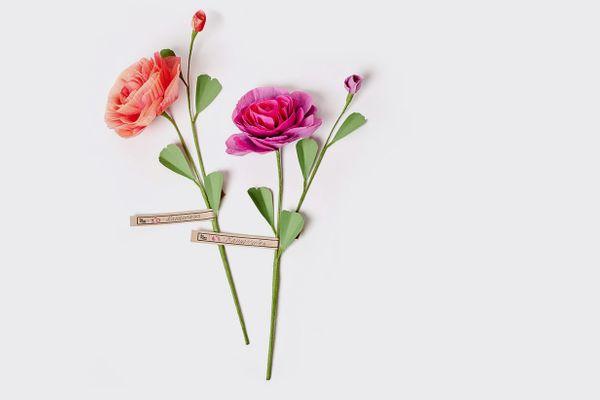 The Green Vase Paper Ranunculus