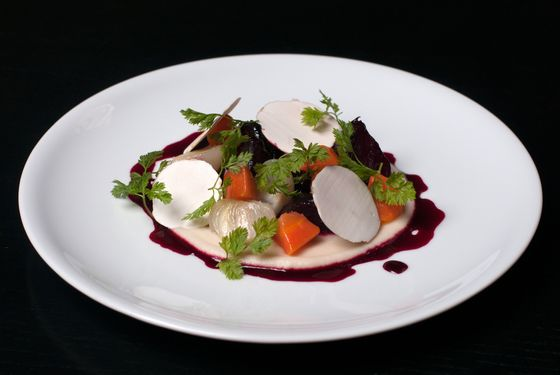 Beet bourguignon, carrots, pearl onions, mushrooms.