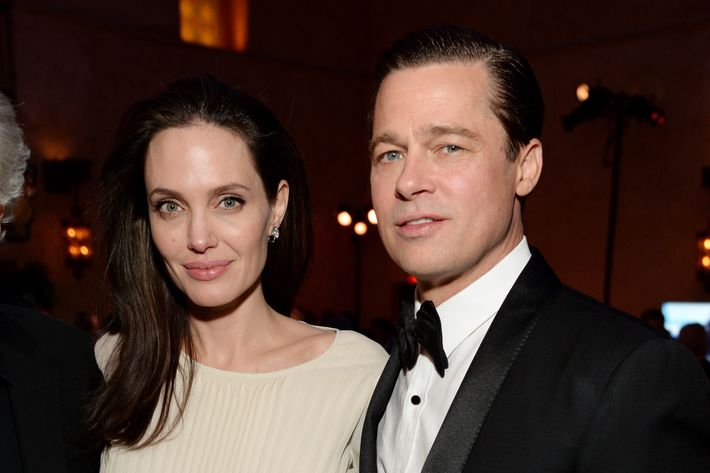 Brad Pitt & Angelina Jolie Are Selling Their Home & Vineyard in France