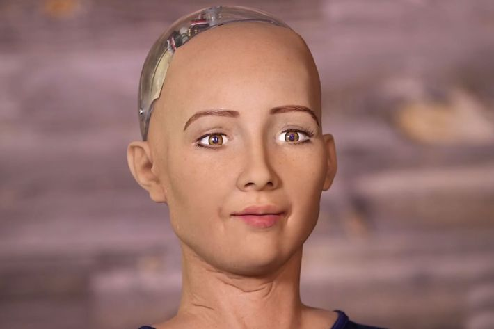 Sophia the Robot.