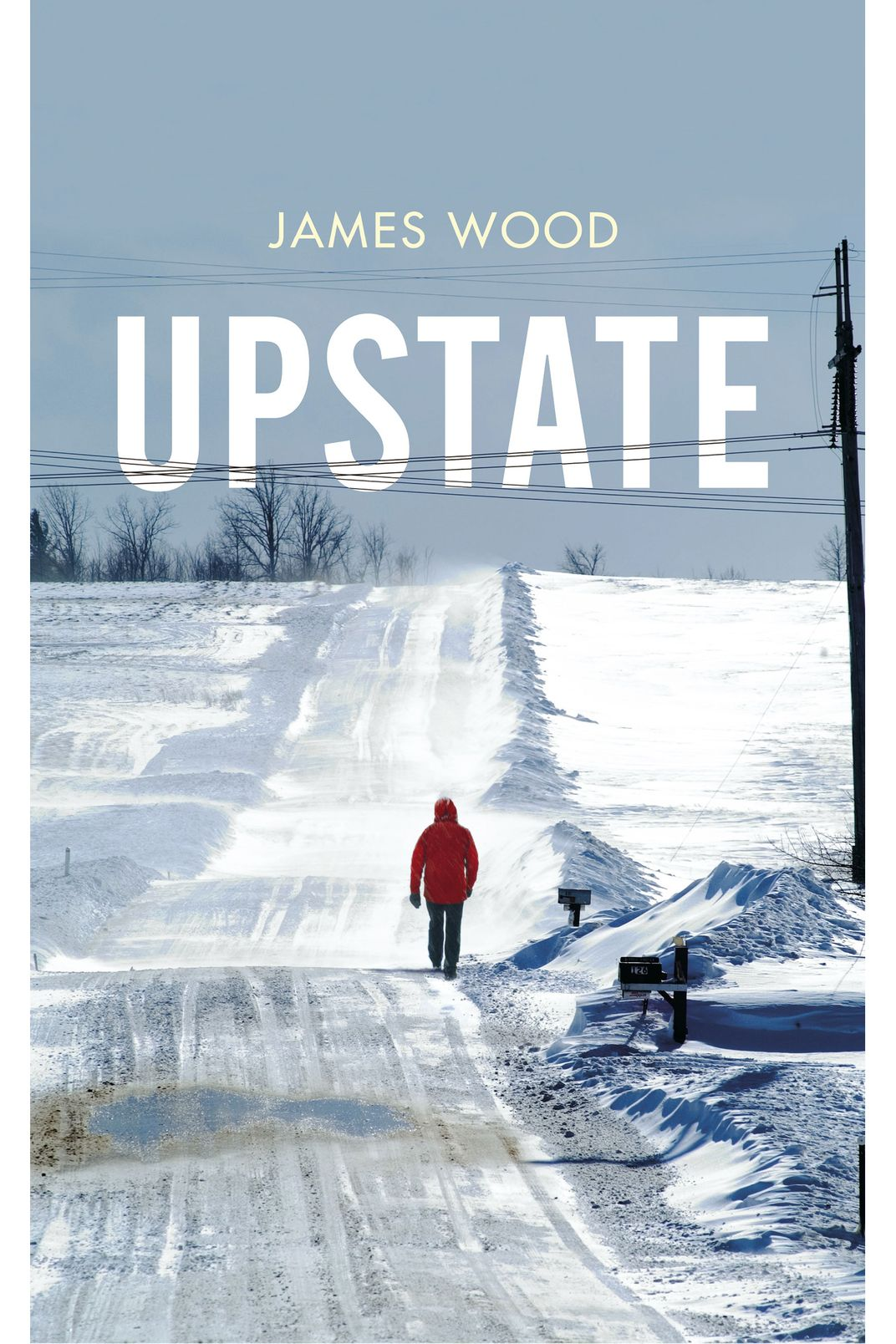 Upstate by James Wood