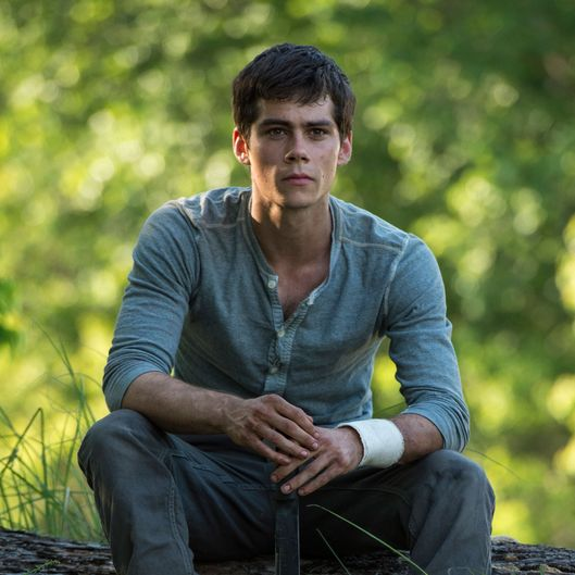 MAZE RUNNER  Dylan O'Brien stars as Thomas in THE MAZE RUNNER.  TM and ? 2014 Twentieth Century Fox Film Corporation. ?All Rights Reserved. ?Not for sale or duplication.