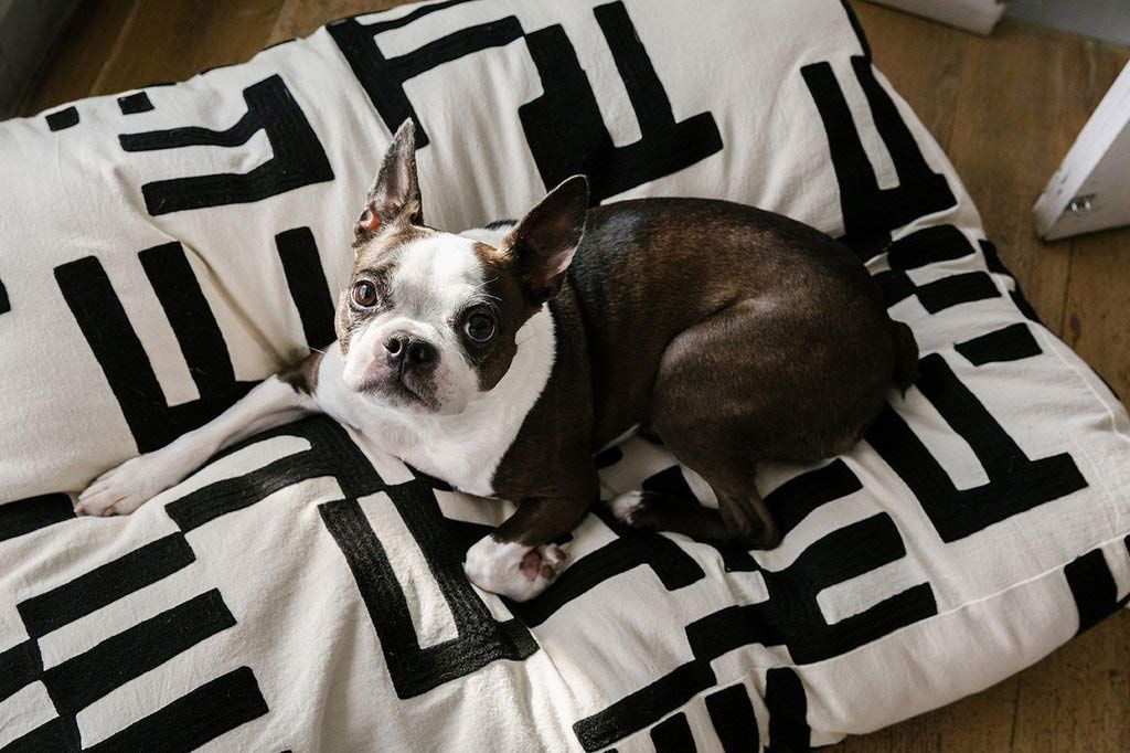 Dusen Dusen Rake Dog Bed