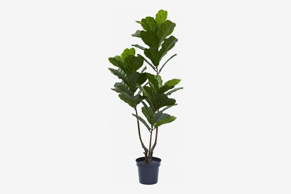 Nearly Natural 5.5-Foot Tall Fiddle-Leaf Fig