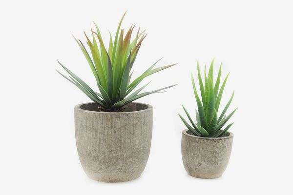 Artificial Aloe Plants (set of 2)