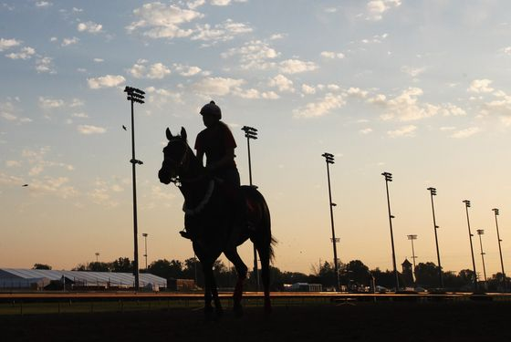 LOUISVILLE, KY - MAY 02:  Horses train on the track  in preparation for the 138th Kentucky Derby at Churchill Downs on May 2, 2012 in Louisville, Kentucky.  (Photo by Rob Carr/Getty Images)