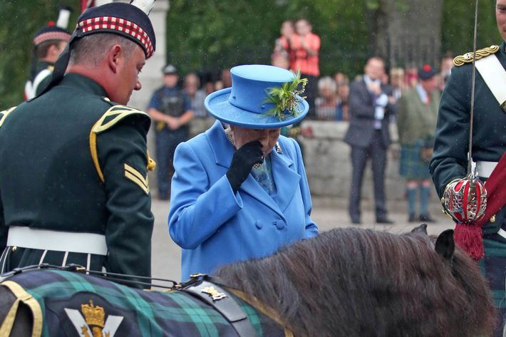 Queen Elizabeth and pony.