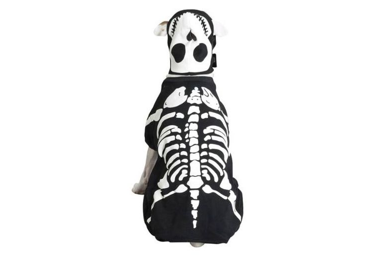 Casual Canine Glow Bones Dog Skeleton Pet Costume