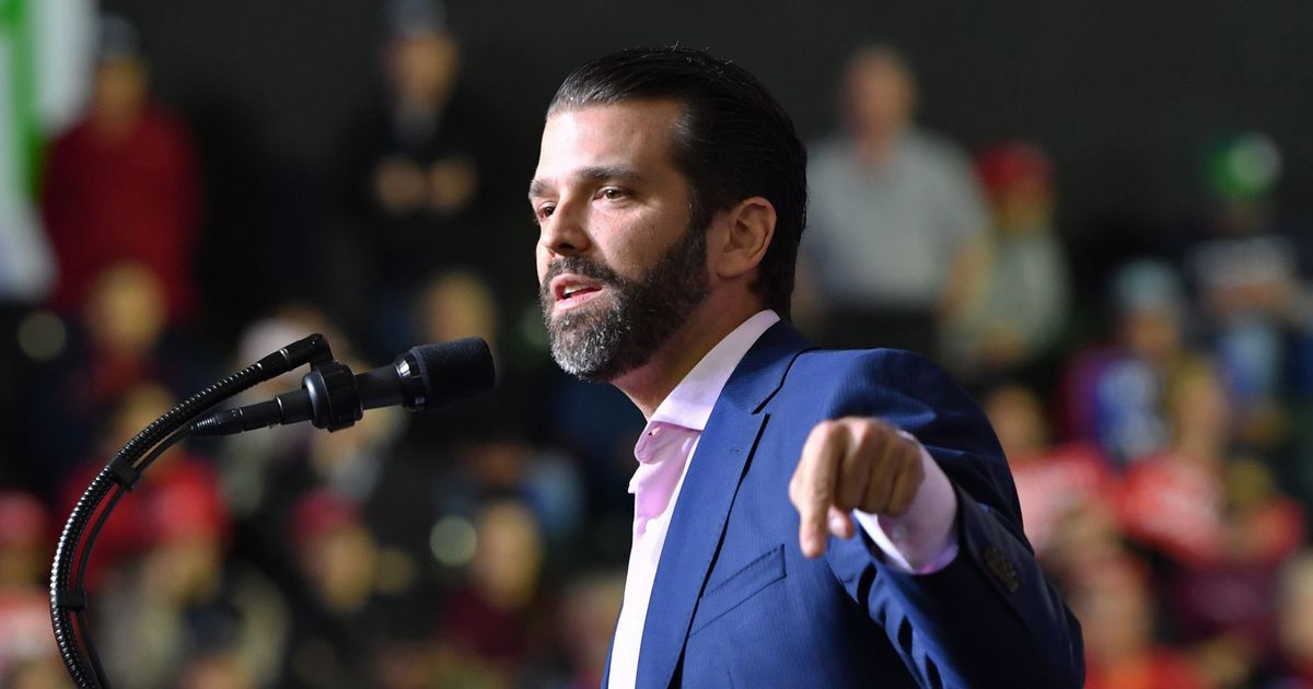 Did Donald Trump Jr. Break Computer Law?