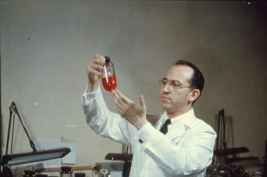 View of American scientist and physician Jonas Salk (1914 - 1995), developer of the polio vaccine, wearing a white lab coat, and smiling while holding up a bottle in the laboratory, mid twentieth century. (Photo by Archive Photos/Getty Images)