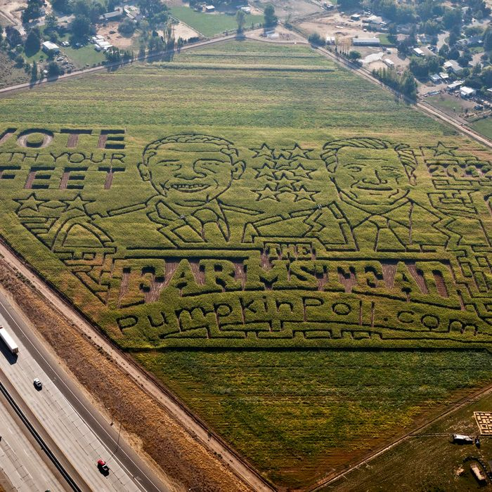 An 18-acre corn maze at The Farmstead in Meridian, Idaho, features a political face-off between Republican presidential candidate Mitt Romney and President Barack Obama.