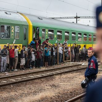 Migrants Refuse To Leave Train Stopped By Police At Hungarian Station