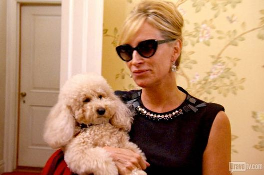 Real Housewives Of Nyc Recap Mud In Your Eye Vulture