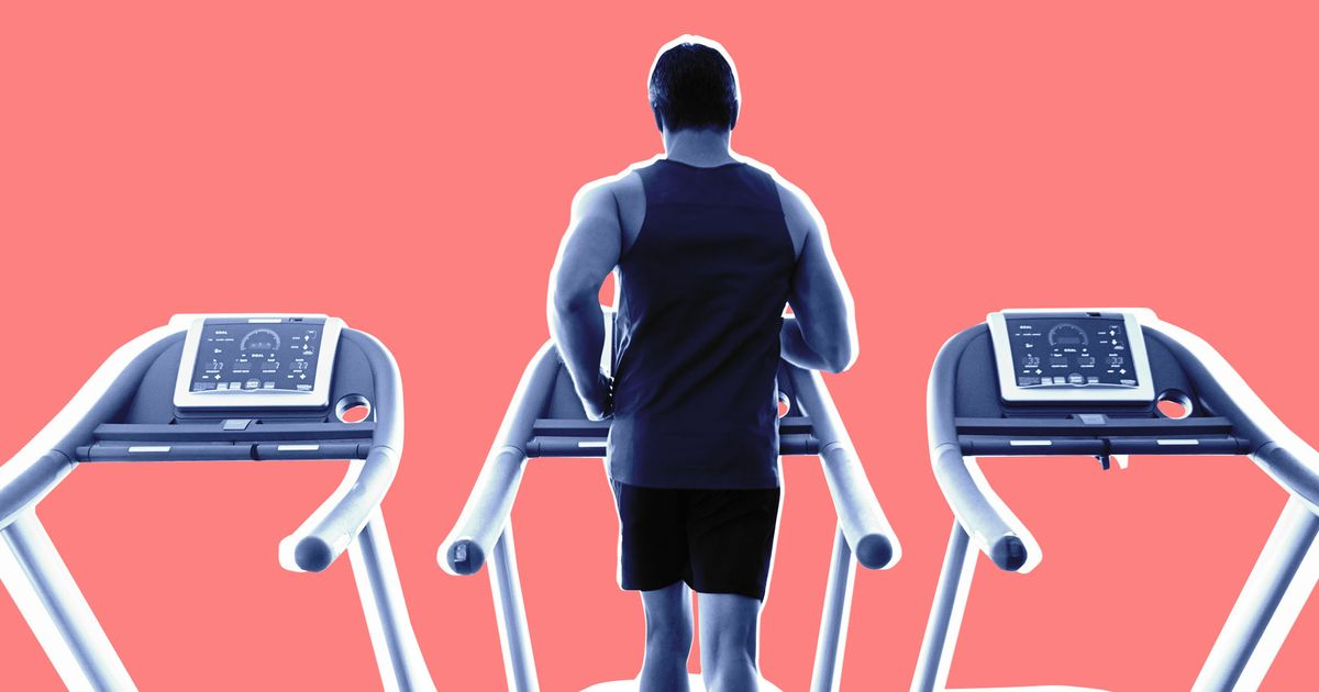 How Exercise Shapes You, Far Beyond the Gym