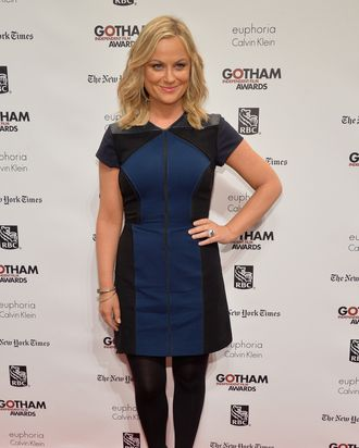 NEW YORK, NY - DECEMBER 02: Actress Amy Poehler attends IFP's 23nd Annual Gotham Independent Film Awards at Cipriani Wall Street on December 2, 2013 in New York City. (Photo by Theo Wargo/Getty Images for IFP)