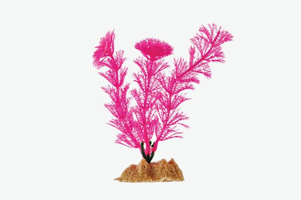 GloFish Small Pink Aquarium Plant