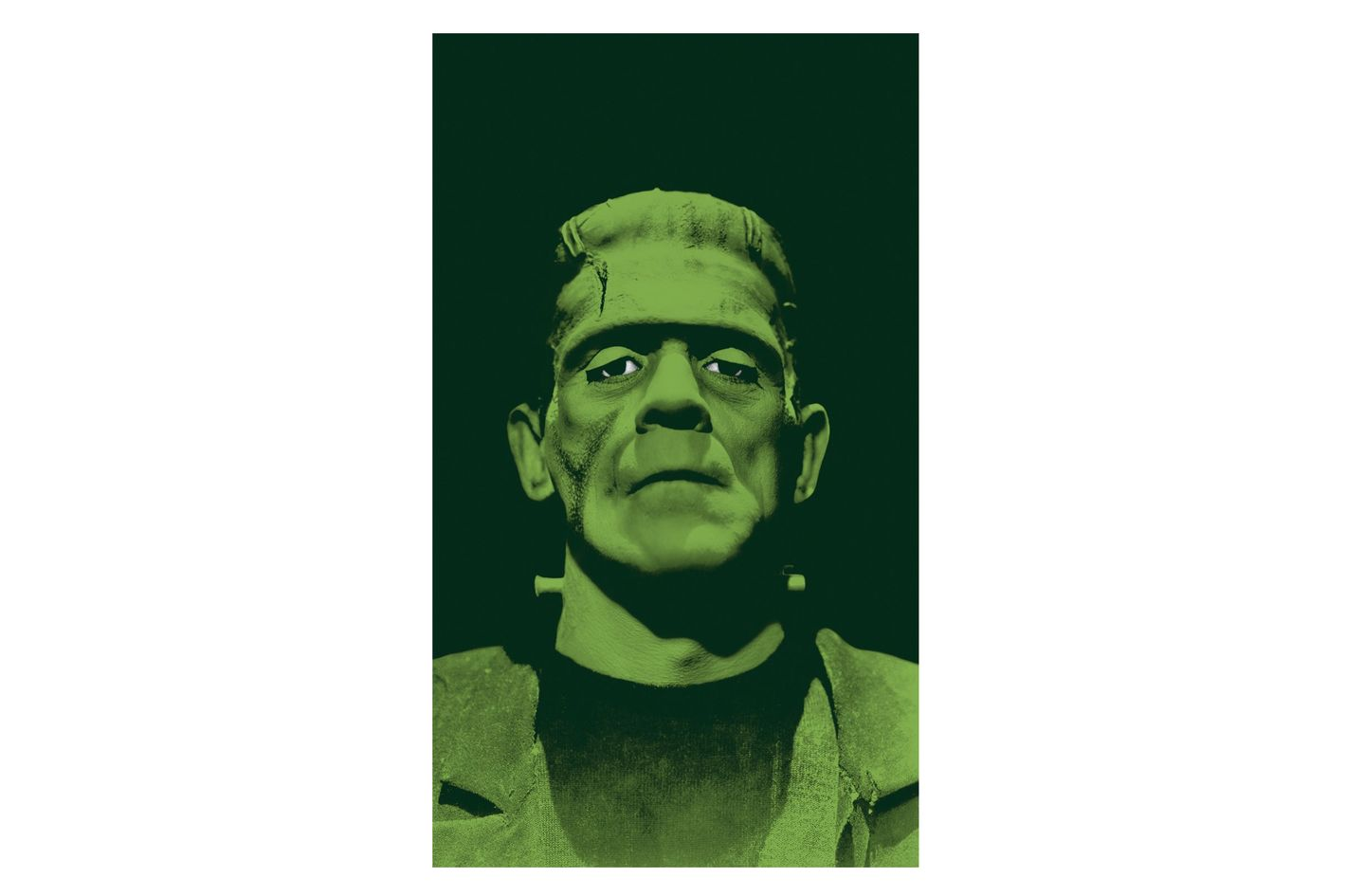 WOWindow Posters Frankenstein's Monster Scary Halloween Window Decoration Backlit Poster