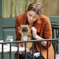 City Protects the Right to Sit Outside With Your Dog at a Restaurant