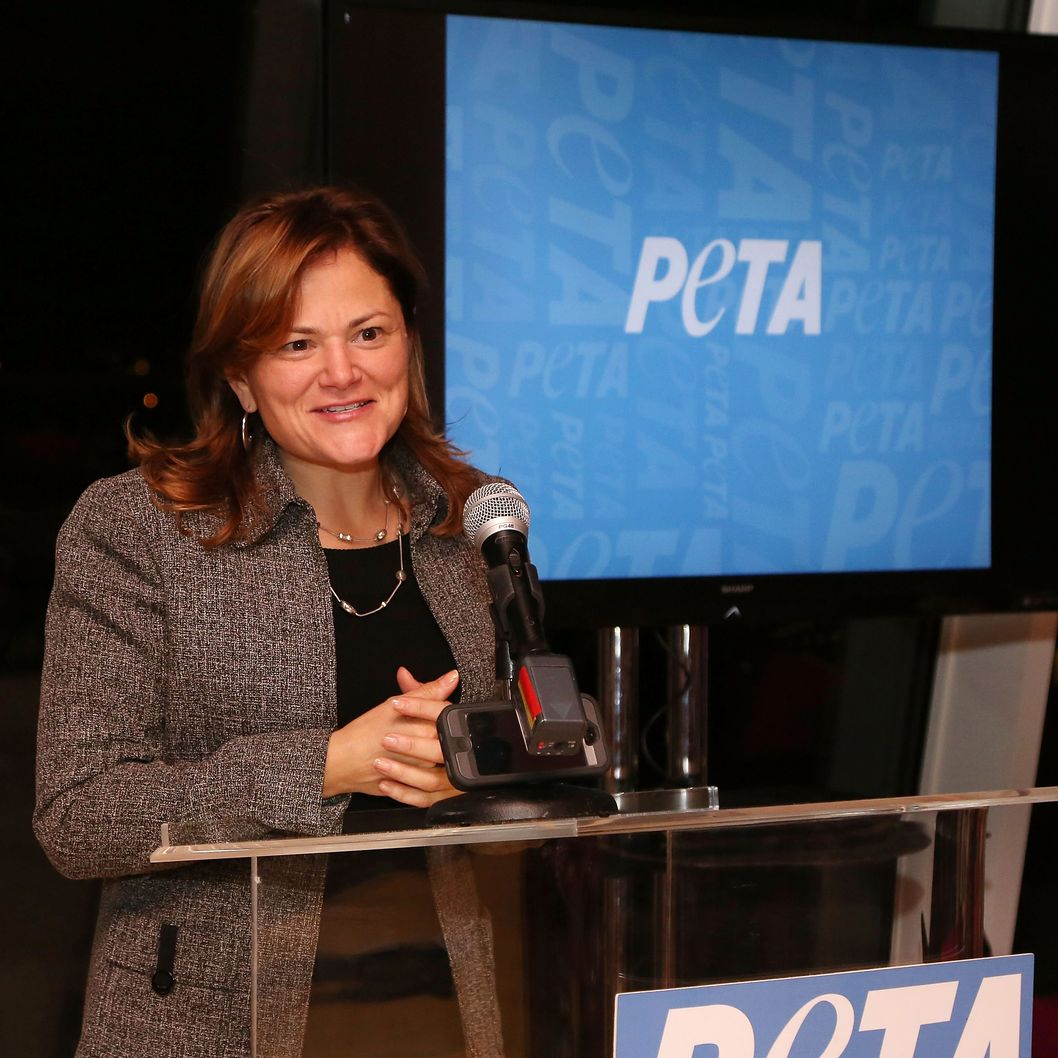 New York Councilwoman Melissa Mark-Viverito speaks at the unveiling of the PETA Vegetarian Icon Postage sheet on November 21, 2013 in New York City.