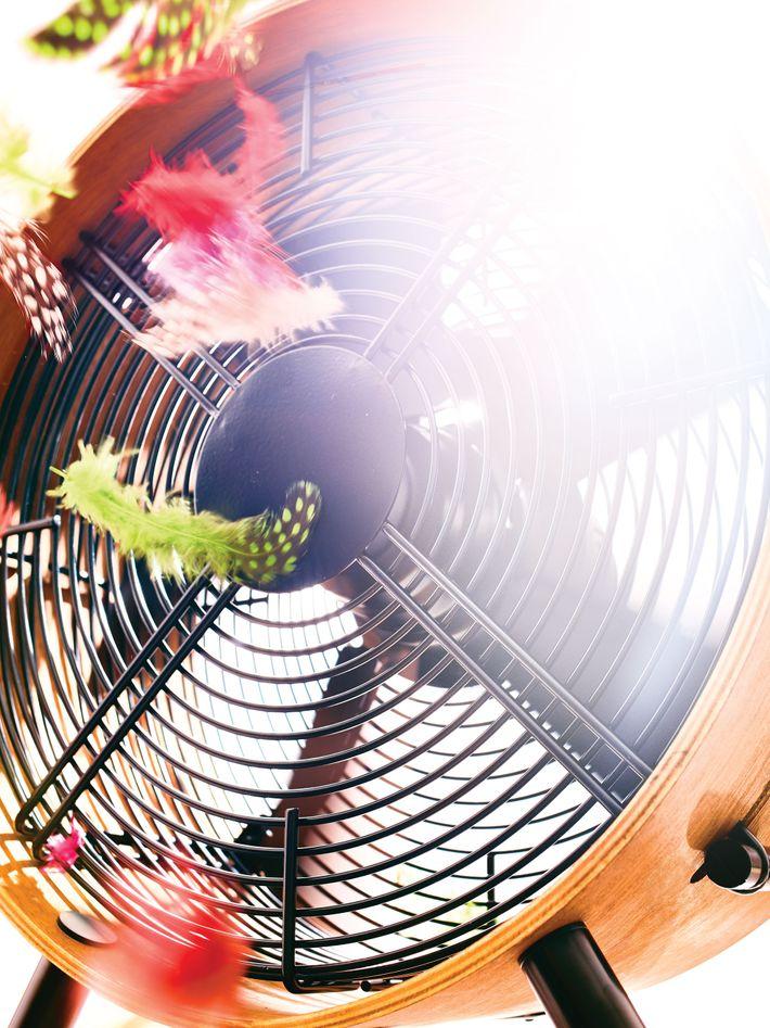 Take that summer heat.