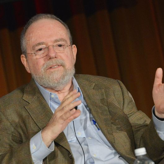 "NEW YORK, NY - APRIL 24:  David Denby, Film Critic at the New Yorker attends Future Of Films - ""The Death Of Film? Answers And Arguments"" panel on April 24, 2013 in New York City.  (Photo by Slaven Vlasic/Getty Images)"