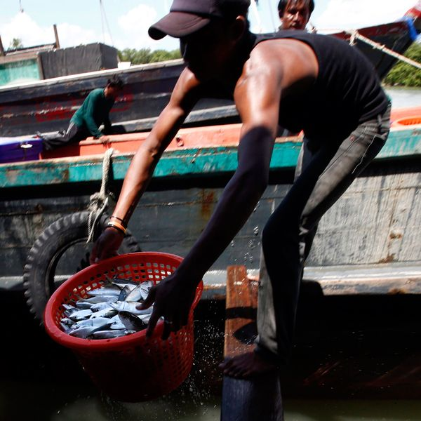 Horrific Details Continue to Emerge About Southeast Asia's Fishing Slaves