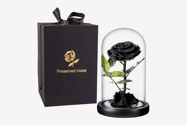 Black Preserved Rose in Glass Dome
