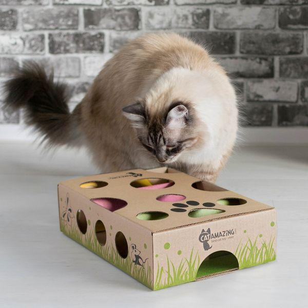 Cat Amazing Interactive Treat Maze & Puzzle Cat Toy