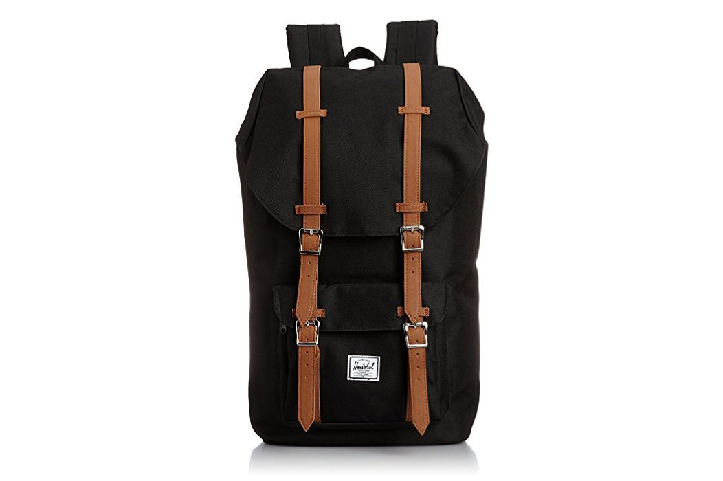 Best Travel Backpacks Carry On Backpacks Frequent Travelers