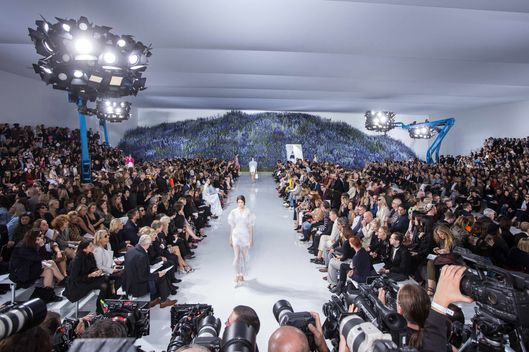 Christian Dior : Runway - Paris Fashion Week Womenswear Spring/Summer 2016