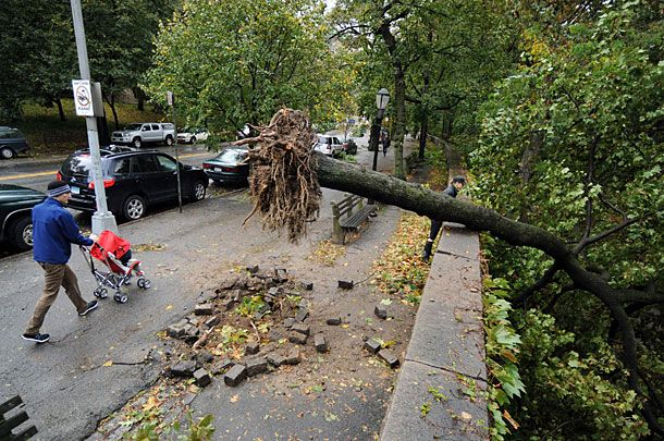 Pedestrians walk past an uprooted tree on Riverside Drive in New York, U.S., on Tuesday, Oct. 30, 2012. New York City officials began assessing damage after superstorm Sandy killed 10 people, sparked a fire that razed 80 homes in a Queens, flooded tunnels of the biggest U.S. transit system and left 750,000 customers without power, including the lower third of Manhattan. Photographer: Peter Foley/Bloomberg via Getty Images