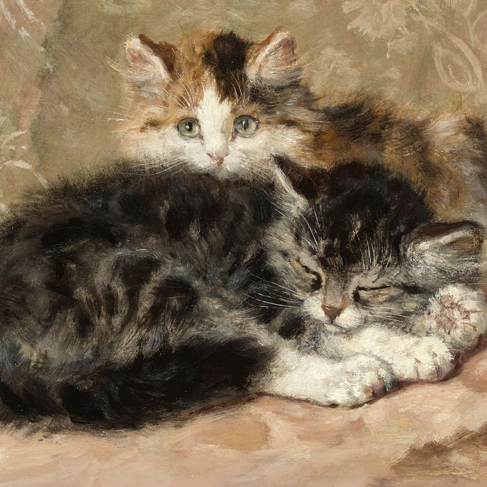 Revisiting The 19th Century S Cat Painting Renaissance